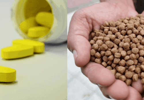 Monitoring Enteric Coating For Pharmaceutical Products And Livestock Feed